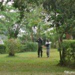 Mabamba swamp birding