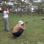 birding gorillas uganda