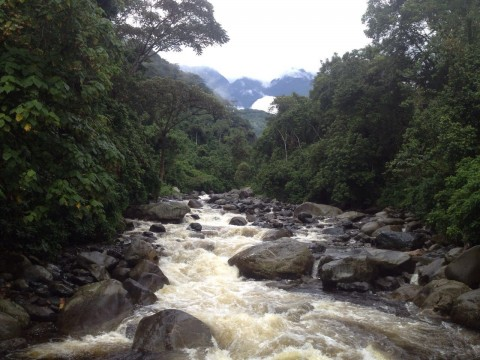 hike Rwenzori mountains