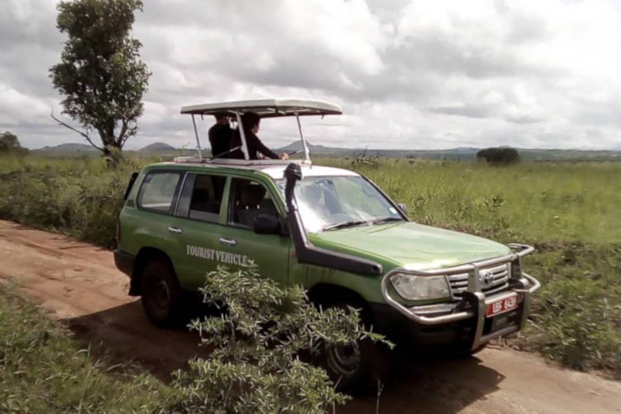 Mamaland safaris vechicles