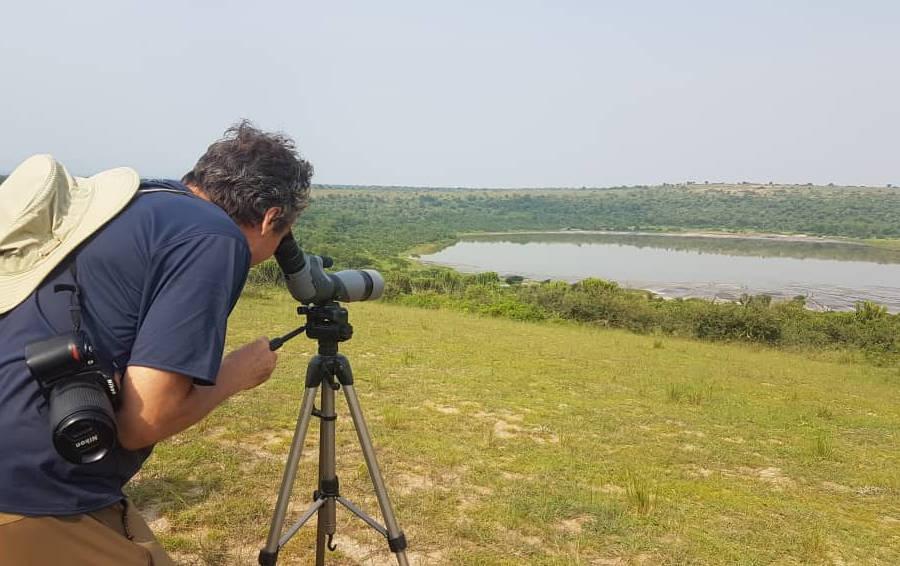 17 days Uganda Rwanda birding safari