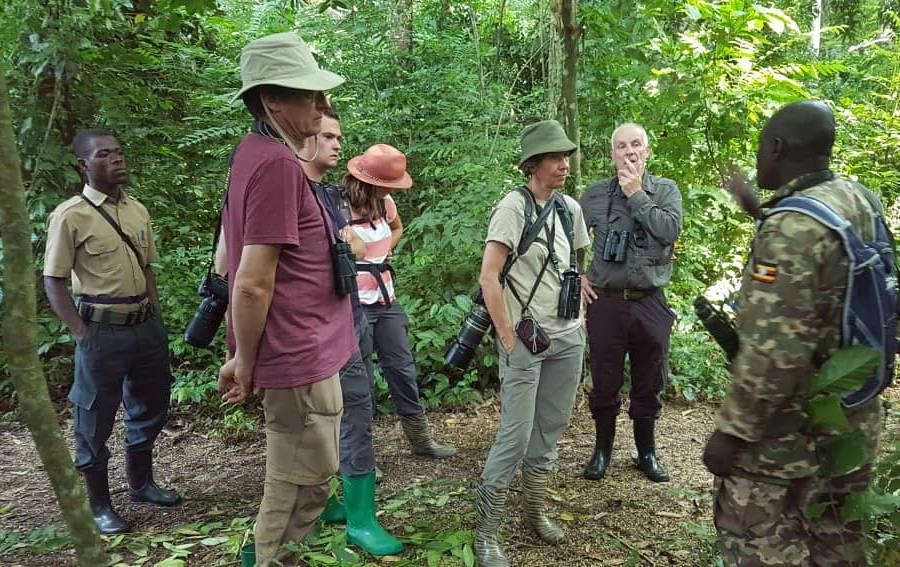 Birding tour Uganda