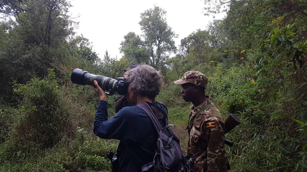 12 days Uganda birding safari