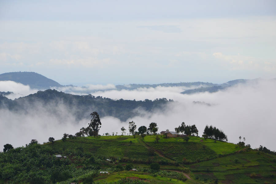 Bwindi Mountains