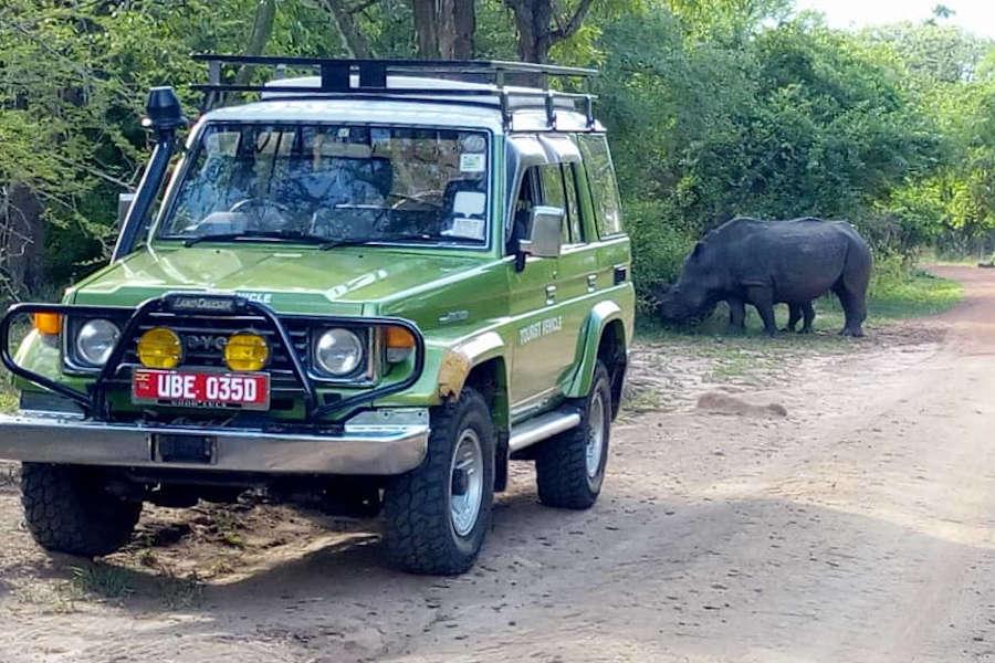 Murchison & Kibale safari